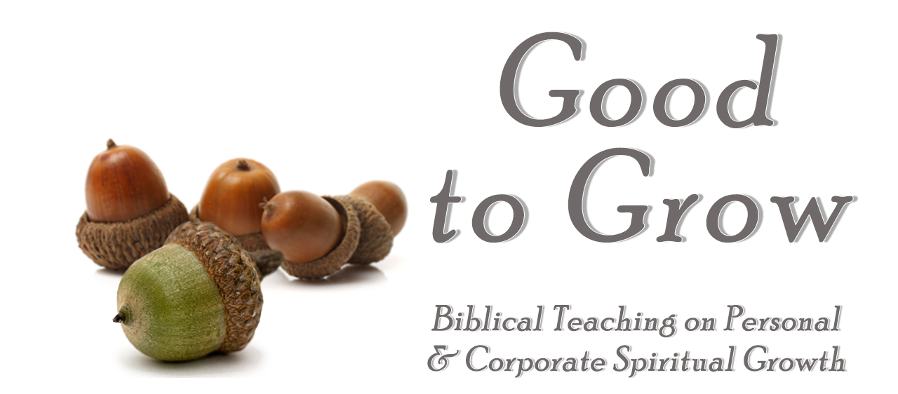 Good to Grow sermon series with image of acorns. Biblical teaching on personal and corporate spiritual growth.
